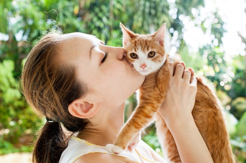Good Gifts For Cat Lovers